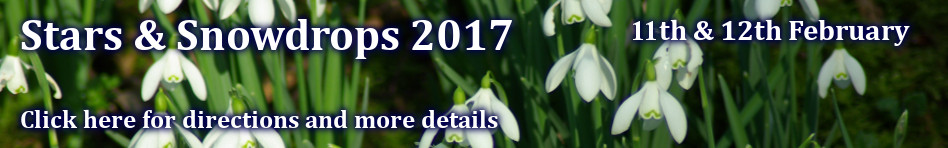 Stars & Snowdrops. Click for more information.
