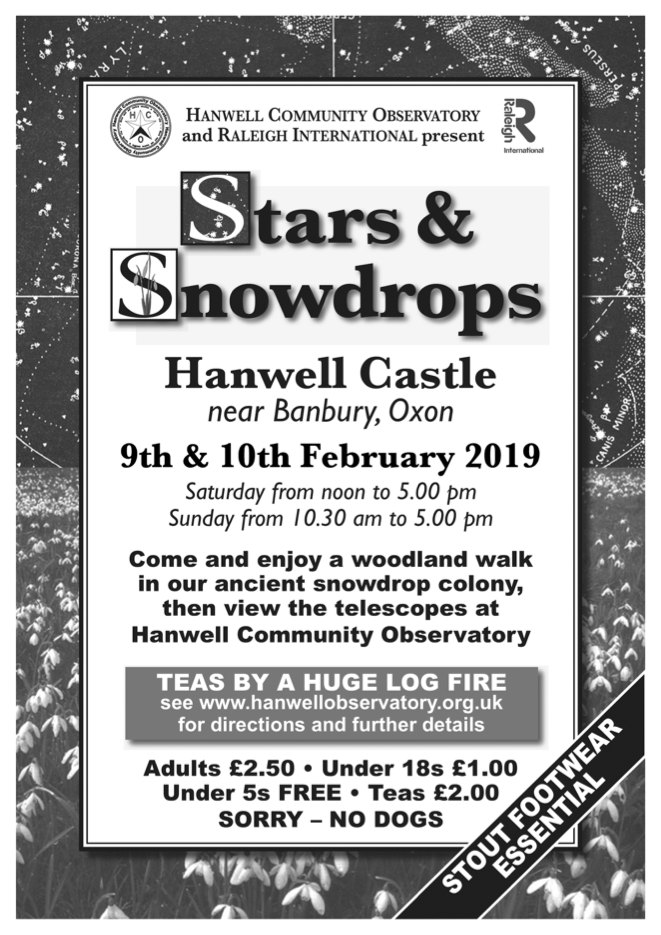 Stars & Snowdrops poster
